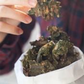 Kale Jerky, Better than Potato Chips.